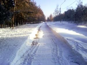 Тропинка вдоль Русской